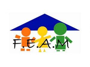 Logo FEAM